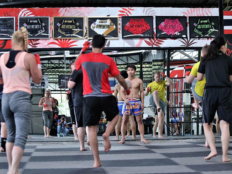 Muay Thai Camp Chiang Mai   Thailand Boxing - Gym Bangarang